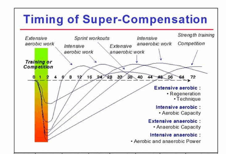 Supercompensation1