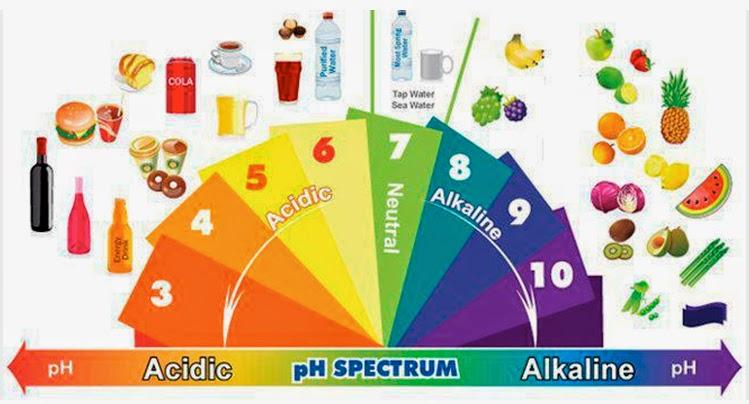 basische vs verzurende voeding